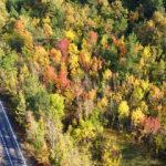 Bartın'da rengarenk sonbahar