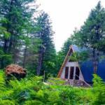 Bungalov evler turizmi canlandırıyor