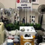 Çekmeköy'de uyuşturucu operasyonu! Evi uyuşturucu serasına dönüştürdüler