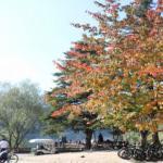 Gölcük Tabiat Parkı sonbaharda ilgi odağı