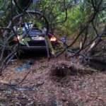 Kırklareli'deki feci kaza: Çin uyruklu 5 kişiden 1'i öldü!