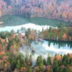 Borçka'da kartpostallık hazan manzaraları