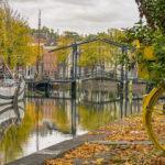 Hollanda'dan muhteşem sonbahar manzaraları