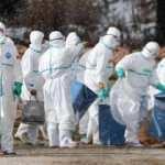 Kovid-19'dan daha ölümcül! H5N6 adlı virüste vakalar patladı, bulaştığını öldürüyor