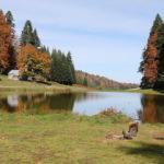 Pürenli Yaylası'nda harika sonbahar manzaraları
