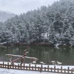 Karadeniz'in doğa harikası beyaz örtüyle kaplandı