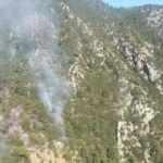 Orman yangınına neden olan 7 turist tutuklandı