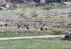 Kürtler Rojava'ya dönmeye başladı