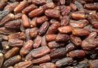 Gazze ekonomisine can veren meyve