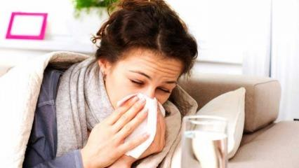Soğuk algınlığına iyi gelen besinler