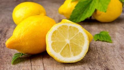 Limon uzun süre nasıl taze tutulur?