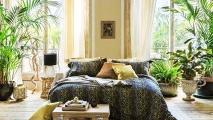 Tropikal dekorasyon trendi