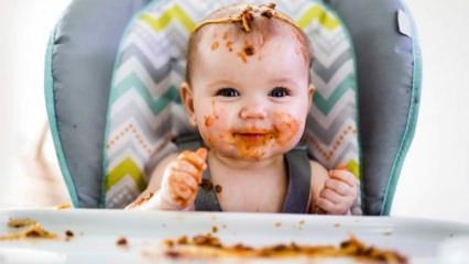 Bebekler için parmak besinler nelerdir?