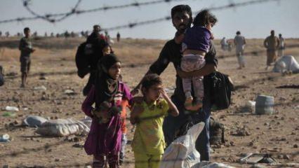 2018 YSK Seçimde kaç Suriyeli oy kullandı? Vatandaşlık hakkı kazanan!