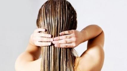 Kuru ve yıpranmış saçlar için doğal maske