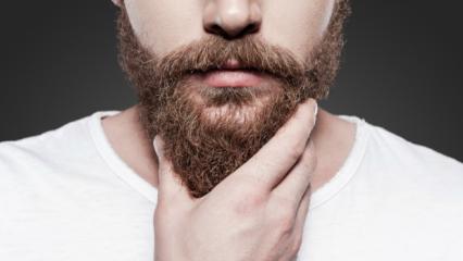Sakalın faydaları neler? Sinek kaydı tıraş olmanın faydası var mıdır?