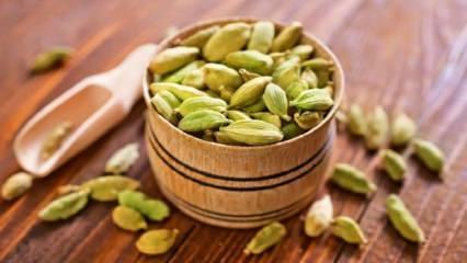 Güçlü vitamin kaynağı: Kakulenin faydaları nelerdir? Kakule çayı ne işe yarar?