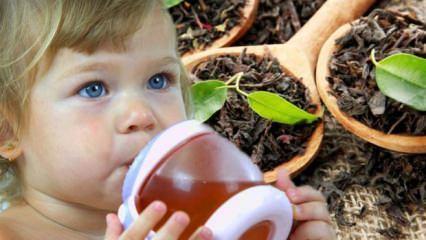 Bebekler çay içebilir mi?