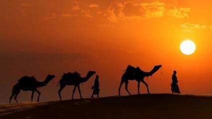 Cennetle müjdelenen 10 sahabi kimlerdir? Aşere-i Mübeşşere nedir?