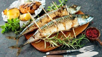 Uzmanlar uyardı! Balıklar zehir dolu çünkü...