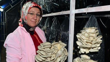 İşler artınca eşini işe alan girişimci kadın