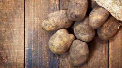 Patatesler nasıl saklanır?