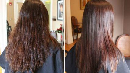 Kuru saçlara ne yapılır? Kuru saçları nemlendiren doğal yöntemler