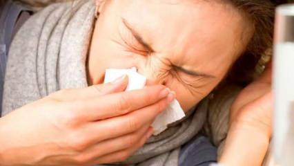Alerji nedir, tedavisi? Alerjiden kurtaran ısırgan yaprağı çayı tarifi