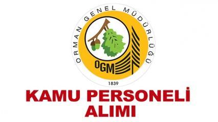 Orman Genel Müdürlüğü kamu personeli alımı! OGM başvuru şartları neler?
