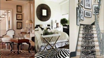 Ev dekorasyonunda zebra modası