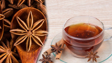 Anason tohumunun faydaları nelerdir? Anason çayının yapımı! Anason yağı kullanımı...