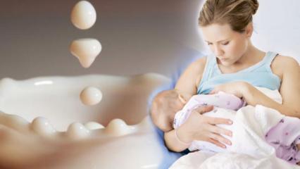 Anne sütü nasıl çoğaltılır? Anne sütü arttıran kür tarifleri