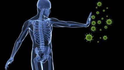 Glutatyon maddesinin vücuda etkileri! Glutatyon maddesi hangi besinlerde bulunur?