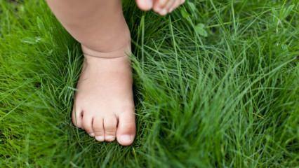 Bebek ayakkabı numarası nasıl hesaplanır? İlk ayakkabı nasıl seçilmeli?