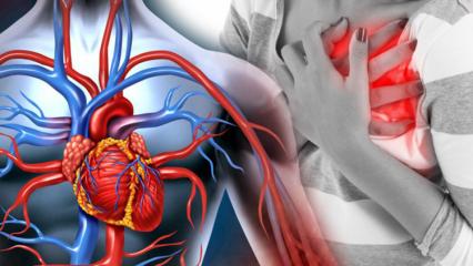 Damar tıkanıklığı neden olur? Kaç çeşit damar tıkanıklığı vardır?