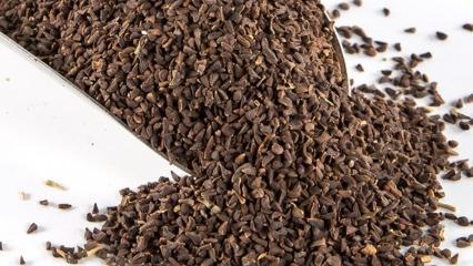 Üzerlik tohumunun faydaları nelerdir? Üzerlik tohumunun çayı nasıl yapılır?