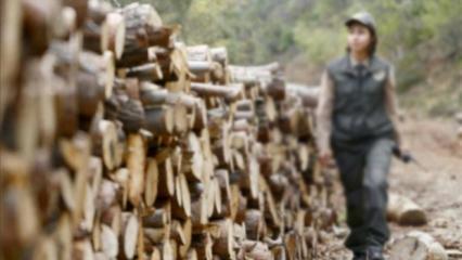 OGM orman muhafaza memuru alımı! Başvuru tarihi ne zaman?