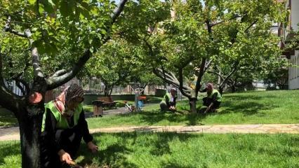 Bağcılar'da nostalji bahçelerine çocukları gibi bakıyorlar
