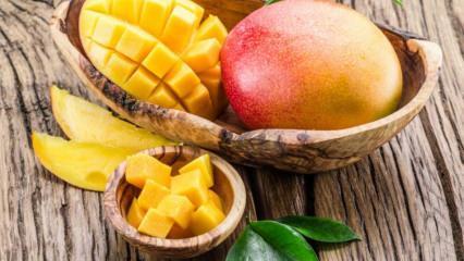 Mangonun faydaları nelerdir? Mango hangi hastalıklara iyi gelir? Düzenli mango tüketirseniz ne olur?