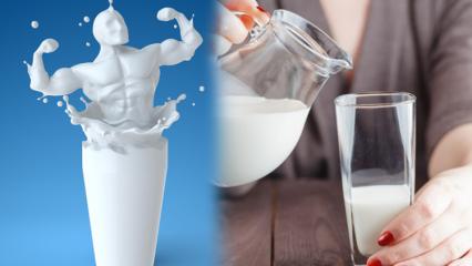 Yatmadan önce süt içmek zayıflatır mı? Kalıcı ve sağlıklı zayıflatan süt diyeti