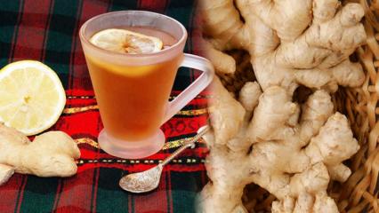 Zencefil ile zayıflama yöntemi nedir? Yağ yakıcı ve incelten zencefil çayı tarifi