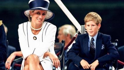 Prenses Diana'nın sweatshirt'ü rekor paraya satıldı!