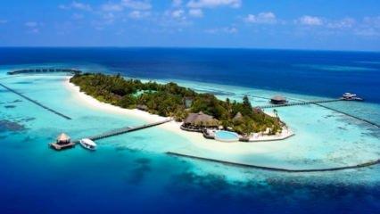 Endonezya'nın Komodo Adası 100 milyarlık koruma altına alındı!
