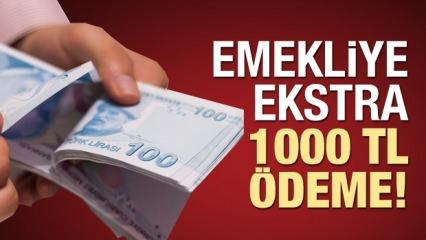 Emekli maaşına ekstra 1000 TL! Ödemeyi almak için gereken şartlar...