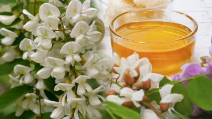 Akasyanın faydaları nelerdir? Akasya çayı ne işe yarar & nasıl yapılır
