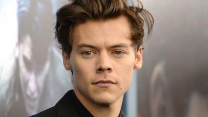 Harry Styles prens olmak istemedi!