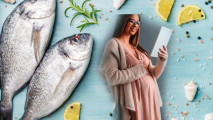Balık zehirlenmesi nedir? Hamilelikte hangi balıklar yenmeli? Cıva içeren balıklar...
