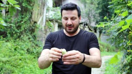 Davut Güloğlu: Şehirde büyüyen çocuklara acıyorum