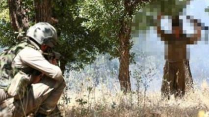 PKK eriyor! Çok sayıda terörist teslim oldu