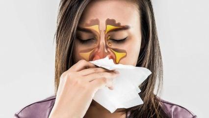 Alerjik rinit nedir? Alerjik rinit belirtileri nelerdir? Alerjlk rinitin tedavisi var mı?